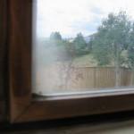 Inspections - Fogging Windows